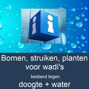 info-bomen-struiken-planten-wadis-water-drop-background