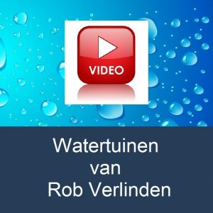 video-watertuinen-van-rob-verlindenwater-drop-background
